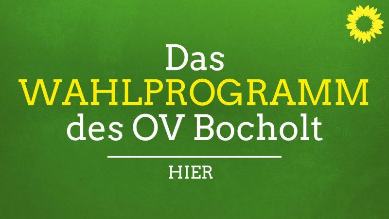 https://gruene-bocholt.de/wp-content/uploads/2020/07/GRUENE_Wahlprogramm_WEB.pdf